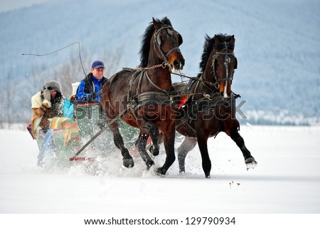 people with horse sledge outdoor - stock photo