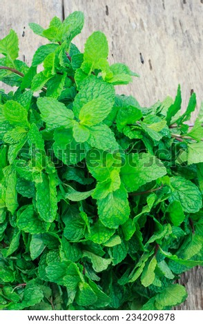 Pepper mint leaves on old wood background - stock photo