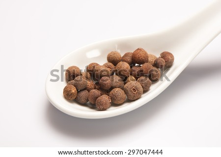 Peppercorn in white ceramic spoon on white background - stock photo