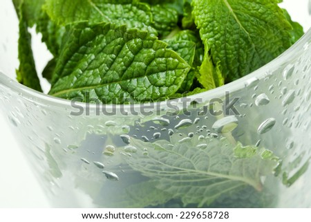 Peppermint Leaves in the Glass - stock photo