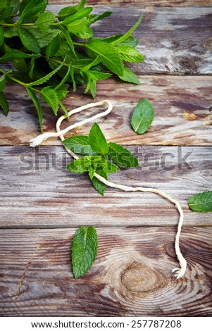 peppermint on wooden table - stock photo