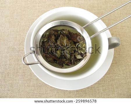 Peppermint tea in tea strainer - stock photo