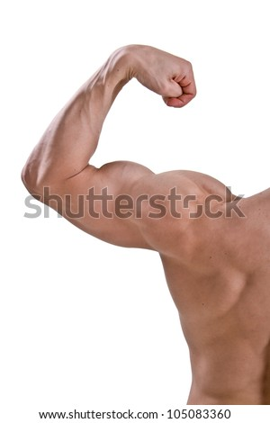 Perfect body man - stock photo