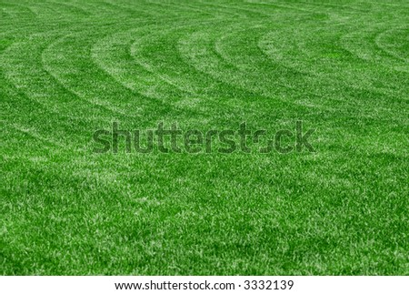 Perfect green lawn with wavy lawnmower tracks