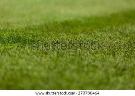 Perfect green soccer pitch ready for the upcoming soccer season. - stock photo