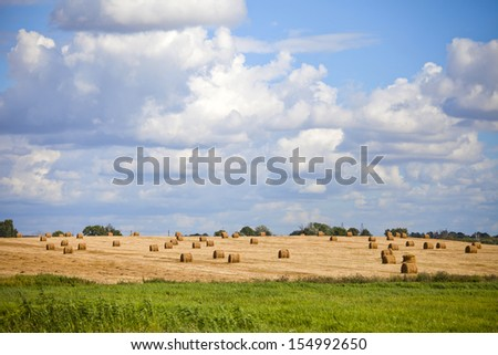 Perfect harvest landscape with straw bales amongst fields in Belarus - stock photo