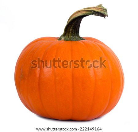perfect pumpkin isolated on white