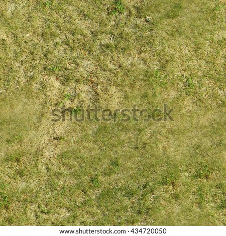 Perfect square seamless grass texture. Ideal for a tiled background, or for texturing a 3D model.