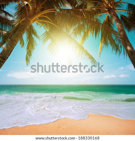 Perfect tropical beach scene - stock photo