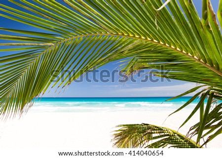 Perfect view on tropical shore with white sand and turquoise sea water through palm tree leafs - stock photo