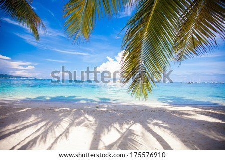 Perfect white beach with green palms and turquoise water - stock photo