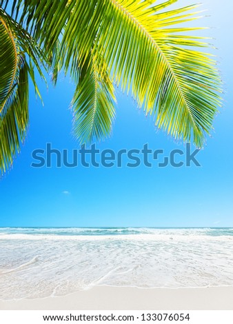 Perfect white sand beach. Vertical composition. - stock photo