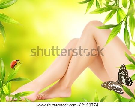 Perfect woman's legs - stock photo