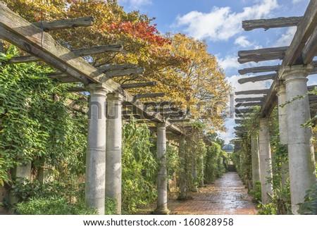 Pergola in autumn park - stock photo