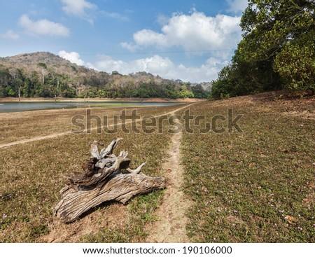 Periyar wildlife sanctuary, Kumily, Kerala, India - stock photo