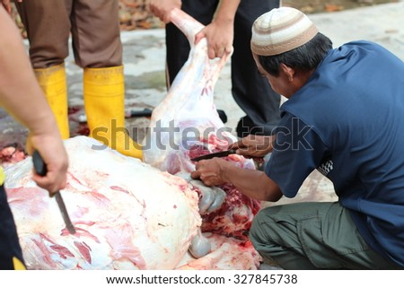 PERLIS, MALAYSIA - SEPTEMBER 24: Unidentified Malaysian Muslims help in slaughtering a cow during Eid Al-Adha Al Mubarak, the Feast of Sacrifice on September 24, 2015 in Perlis, Malaysia