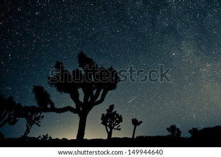 Perseid Meteor Shower - stock photo