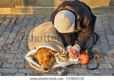 Person and dog - stock photo