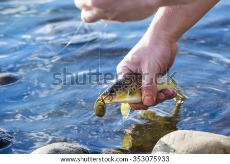 person catch and release fishing for  trout