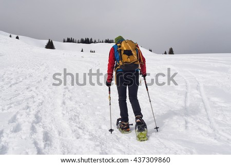 Person cross-country trekking in winter snow using snowshoes and poles walking away from the camera across a snowy plateau towards distant pine trees - stock photo