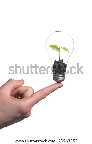 Person holding a green light bulb