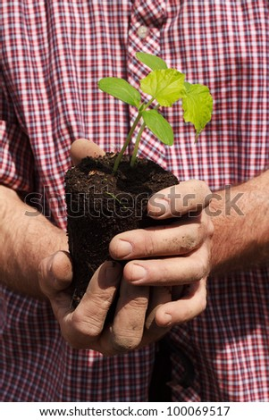 person holding a plant in hands