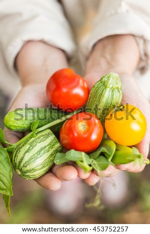 Person holding freshly picked locally grown veggies.