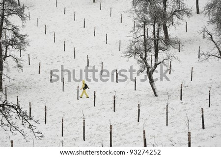 Person is walking in snow in park, Prague - person in blurred motion - stock photo