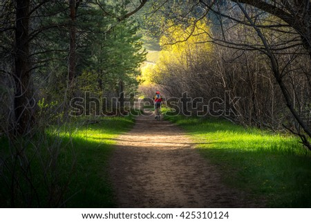 Person mountain biking through a forest trail. - stock photo