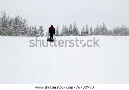 Person pulling a sled through the snow in a snow storm towards some trees in the distance.