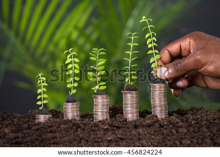 Person's Hand Holding Small Plant On Stacked Coins - stock photo