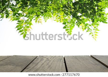 Perspective terrace wood and green leave for usage background - stock photo