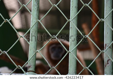 Perspective view of a wire mesh fence with a shallow depth of field