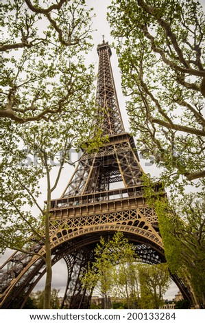 Perspective view of the Eiffel Tower between the trees in Paris - stock photo
