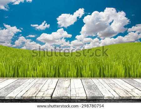perspective wood on grass field and beautiful sky  - stock photo