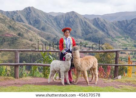 Peru, Urubamba valley, 11.05.2014 Girl and alpaca   - stock photo
