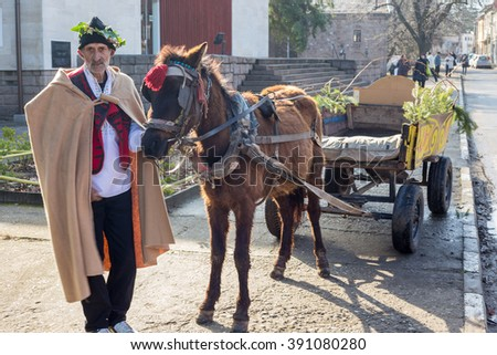 PERUSHTITSA, BULGARIA - FEBRUARY 14, 2015 - Recreating the ritual called Zariazvane in Perushtitsa, Bulgaria. People dressed in traditional clothing dance and cut the vineyards for fruitful harvest.