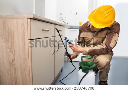 Pest Control Worker Spraying Pesticides On Wooden Drawer - stock photo