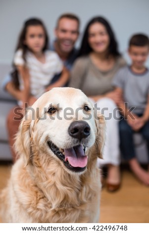 Pet in living room and family sitting on sofa in background - stock photo