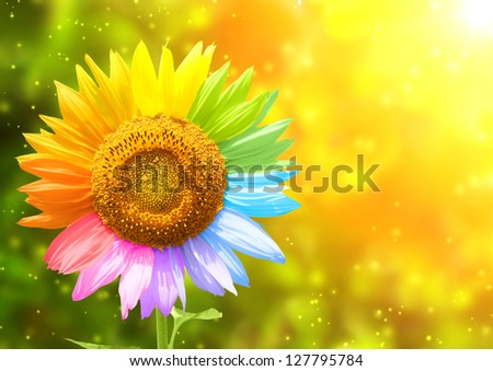 Petals of a sunflower painted in different colors - stock photo