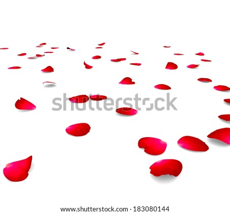 Petals of roses on a floor. The isolated background - stock photo