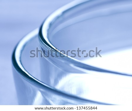 Petri dish - stock photo