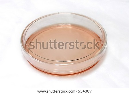 Petri dish with red media on white background - stock photo