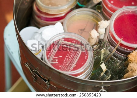 Petri dishes and test tubes stacked in metal container. Growing bacteria. Medical tests and research. Bacterial colonies in hospital laboratory glassware. - stock photo