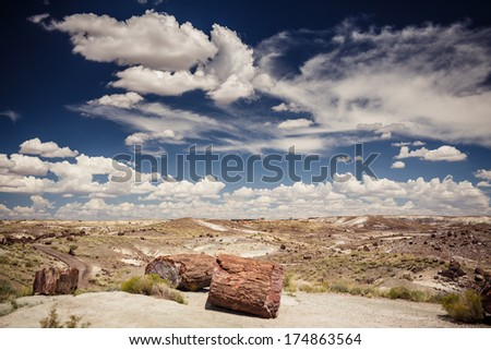 Petrified Forest National Park during sunny day, Arizona. - stock photo