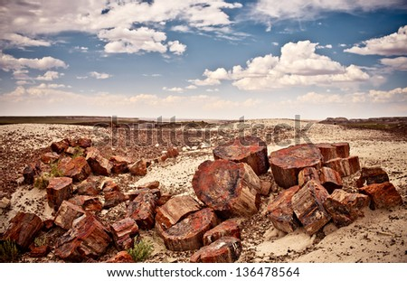 Petrified Forest National Park, USA - stock photo