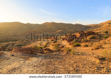 Petrified tree at the bottom of the Big Crater in Israel - stock photo