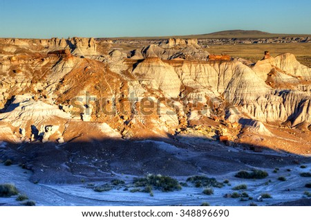 Petrified trees and wind eroded rock formations in the Petrified Forest National Park of Arizona, USA. - stock photo