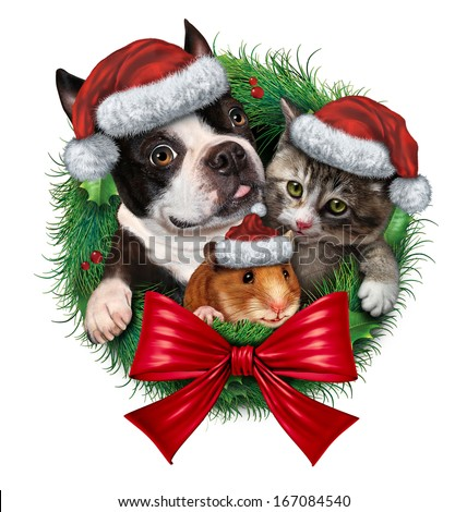 Pets holiday wreath as a dog cat and hamster with Christmas hats as a symbol of veterinary medicine and pet store or animal adoption issues during the winter season celebration on a white background.