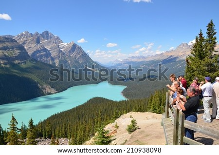 PEYTO LAKE, ALBERTA - AUGUST 1 - Peyto Lake in Alberta, Canada on August 01, 2014. The beautiful Peyto Lake is visited by millions of people every year. - stock photo